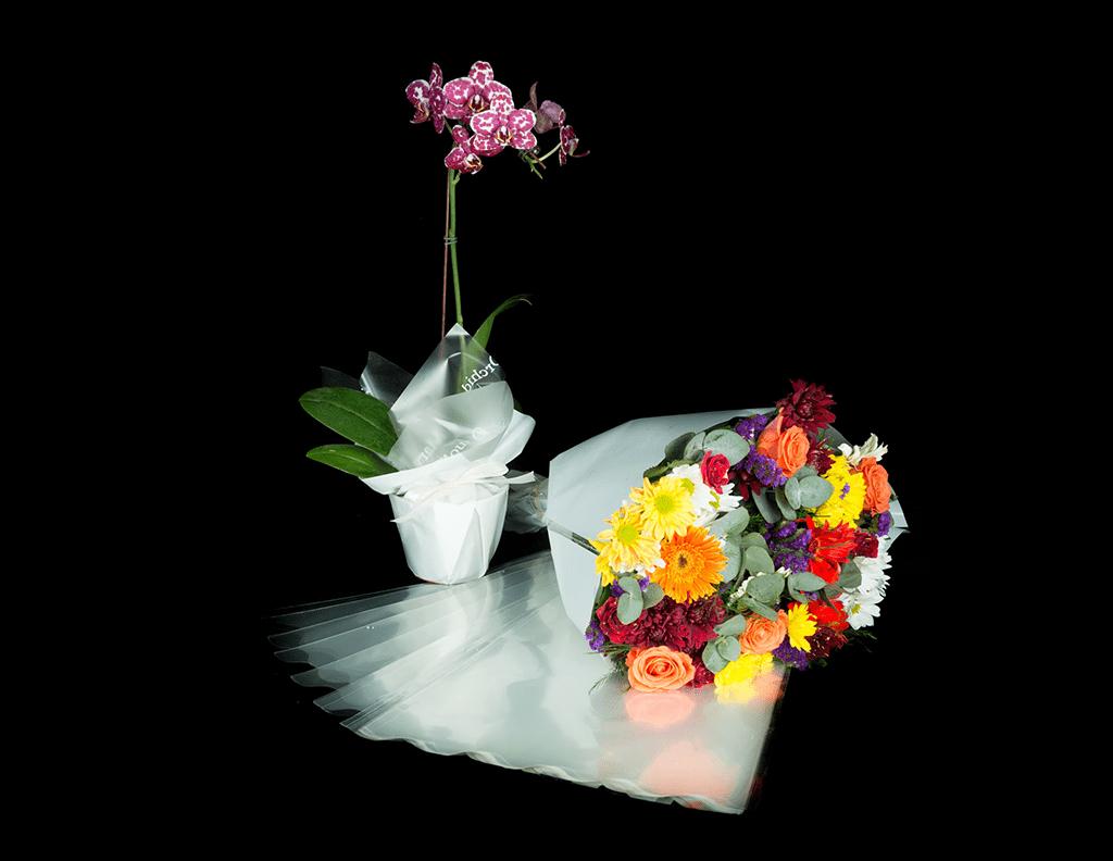 BOPP Sheeting, Tubing, Slitting & Flower Sleeves
